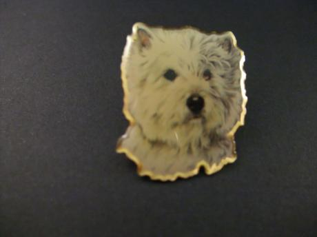West Highland White Terrier ( Westie ) rashond